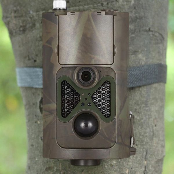 Fotopułapka zamontowana na drzewie